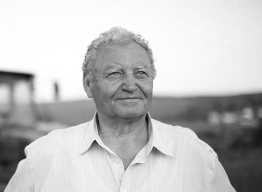 Ștefan Moldovan